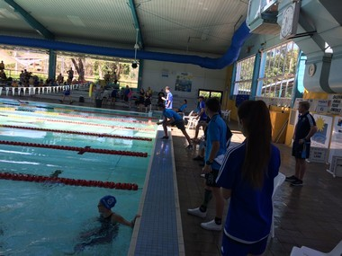 Sports coaching students at zone swimming carnival