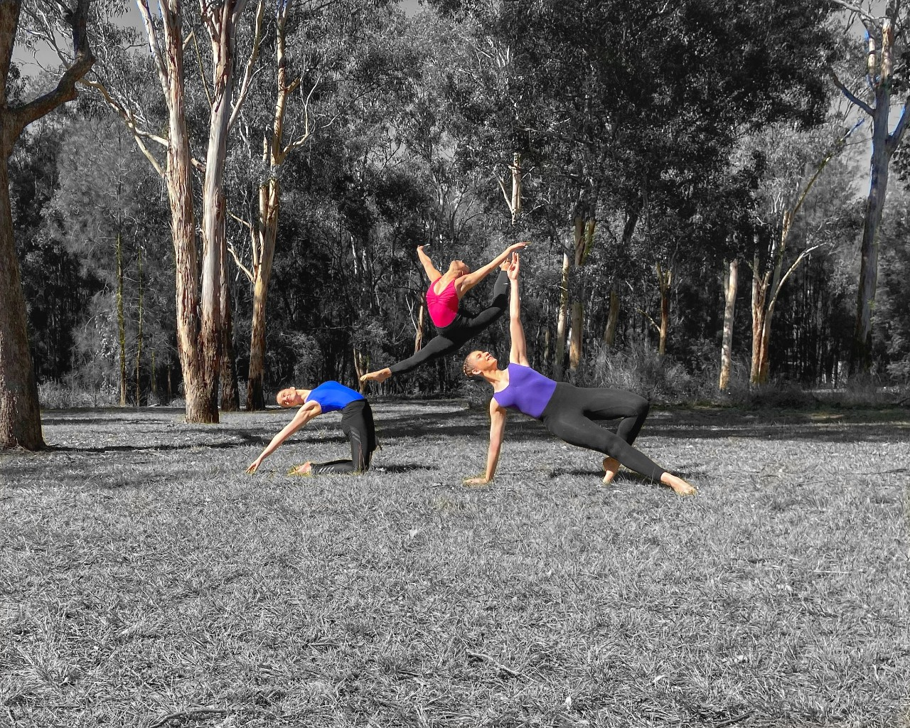 HSC 2020 dance students at Wyndham College
